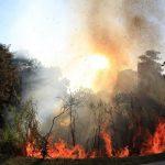 Incêndio atinge centro de cultura negra em Campinas