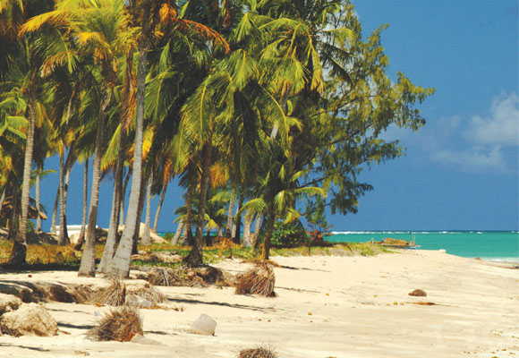 https://revistaraca.com.br/wp-content/uploads/2016/10/Cultura_afro_em_Alagoas_1.jpg