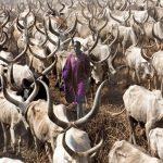 Saiba mais sobre o povo Dinka