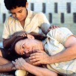 O cinema brasileiro no século XXI
