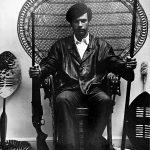 Pantera Negra | Pôster faz referência a retrato de líder dos Panteras Negras